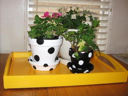 polka-dot-pots_after